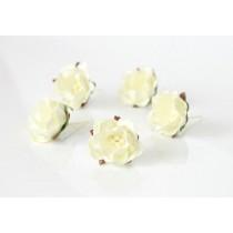 Цветы яблони - Молочные, 1 шт