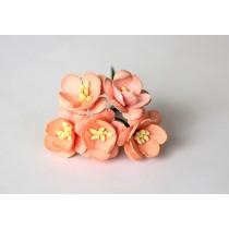 Цветы вишни - Персиковые 135 1 шт