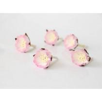 Шиповник - Св.розовый+белый 1 шт