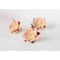 Сакура - Розовая средняя, 1 шт
