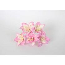 Лилии розовый+белый 1 шт