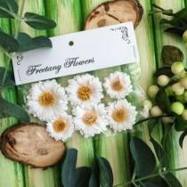 Набор цветов Freetany Flowers – 20 Ромашки
