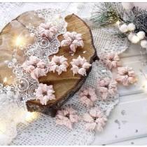 Набор пуансеттий розово-персиковые махровые, 6 шт.