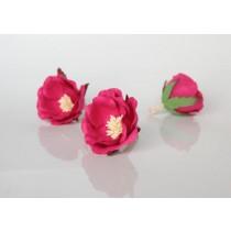 Полиантовые розы - Фуксия, 1 шт.