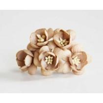 Цветы вишни - Кофе с молоком 148 1 шт, диаметр цветка ок. 2см