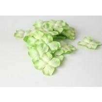 Гортензии Зеленые 2хтоновые большие 1 шт
