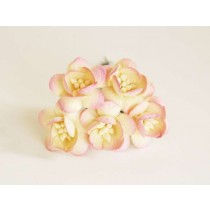 Цветы вишни - Молочный+св.розовый 525 1 шт
