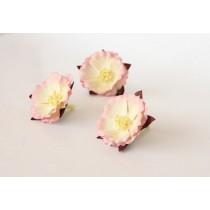 Китайские пионы - Св.розовый+молочный 1 шт.