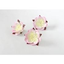 Сакура - Св.розовый+белый, 1 шт