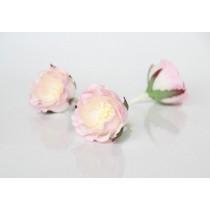 Полиантовые розы - Св.розовый+белый 1 шт
