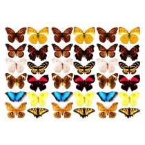 Оверлей  «Бабочки-3-Д»