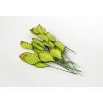 Листья зеленые яркие маленькие длина 2,5 см ширина 1,5 см высота 7 см 1 шт