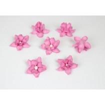 Фиалки - Розовые, 1 шт