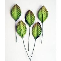 Листья зеленые средние, 1 шт.