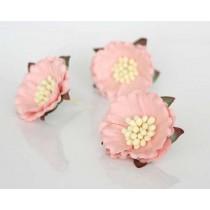 Китайские пионы 2 - Розовоперсиковые светлые, 1 шт.