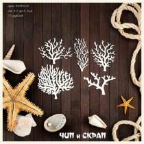 Кораллы, от 4,2 до 6,7 см